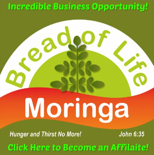 Become an MLM Affiliate